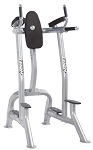 Hoist Fitness CF-3252 Commercial Vertical Knee Raise / Dip