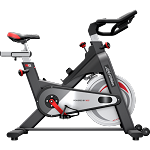 Life Fitness IC2 Commercial Indoor Cycle Exercise Bike and Console