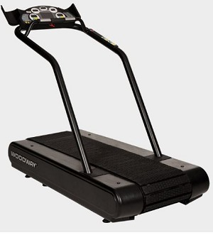 Woodway Mercury Treadmill
